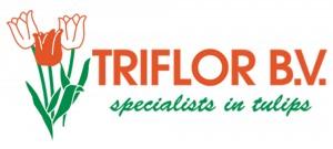 Triflor logo + embleem naast elkaar